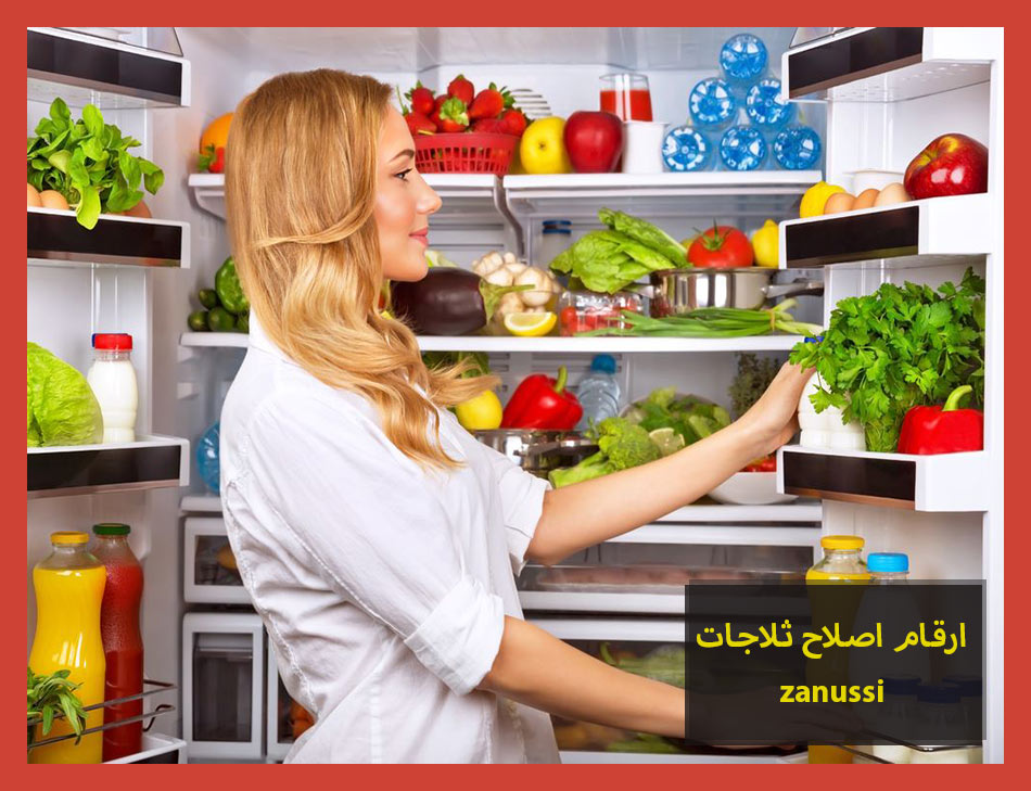 ارقام اصلاح ثلاجات zanussi | Zanussi Maintenance Center